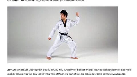 Παρουσίαση των τεχνικών του TAEKWONDO και ορολογίας τους σε 3 γλώσσες!